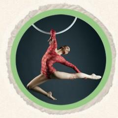 homepage aerial hoop circle image